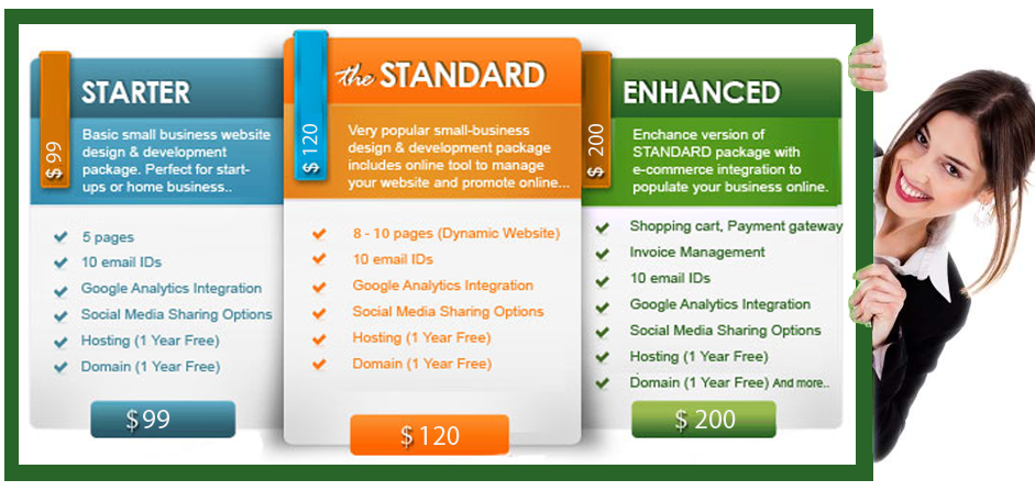 web design price list ,website design cost in india ,affordable