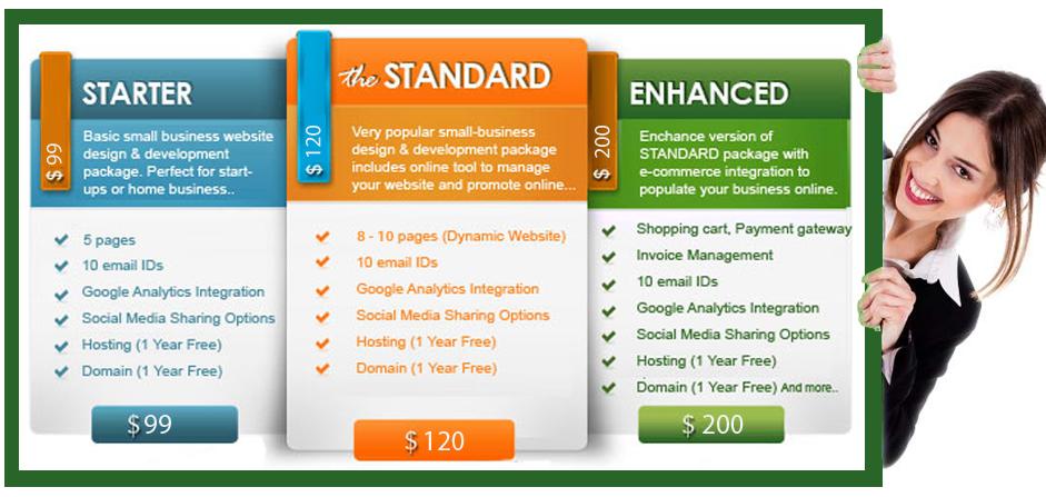 web design price list ,website design cost in india